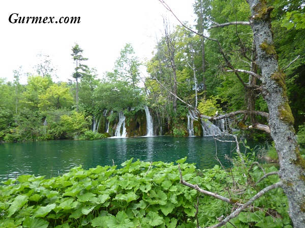 Plitvice Milli Parkı Zadar