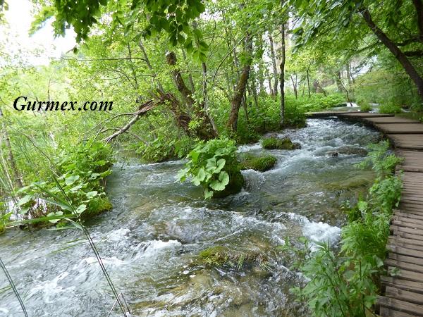 Plitvice Milli Parkı Plitvice gölleri Hırvatistan