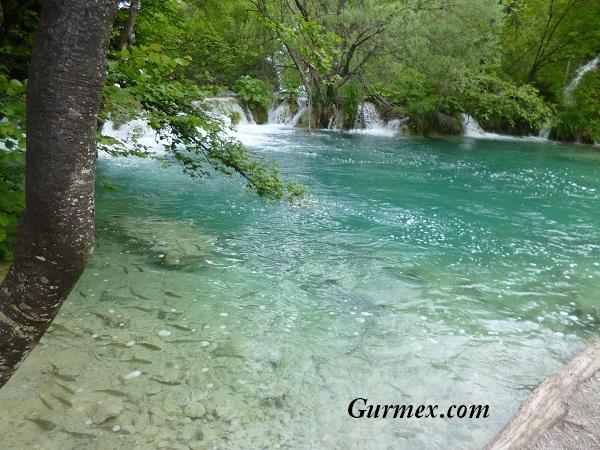 Plitvice Milli Parkı Hırvatistan