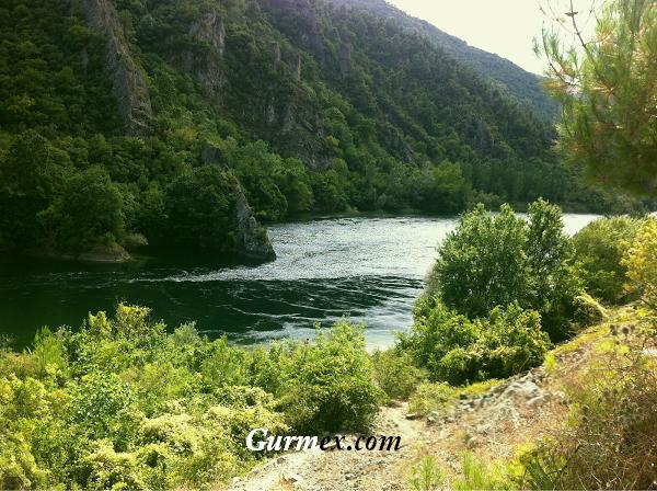 Bafra Altınkaya Barajı Sazan avı