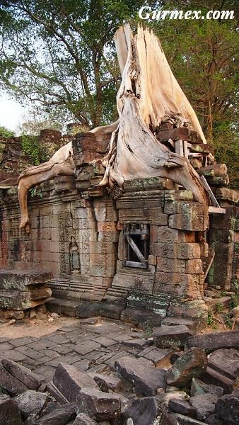 Kamboçya Angkor tapınağı