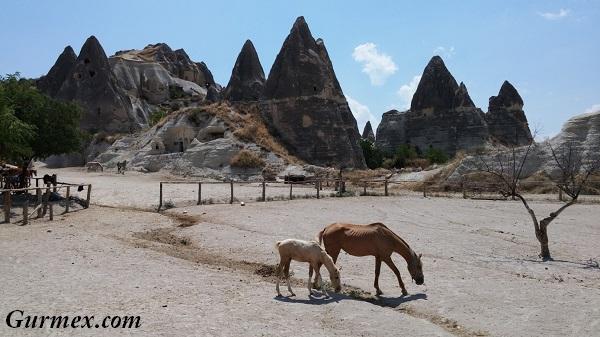 Kapadokya Güzel atlar diyarı