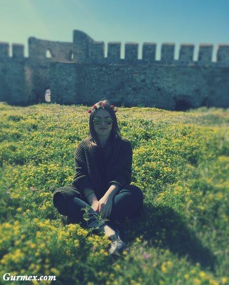 Bozcaada Gezilecek Yerler kır çiçekleri