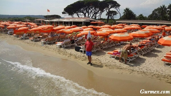 Saint Tropez ne içilir