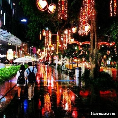 Orchard-caddesi-singapur-nerede-nasil-gidilir-ne-yapilir