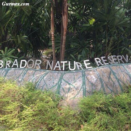labrador park nerede Singapur'da nasıl gidilir