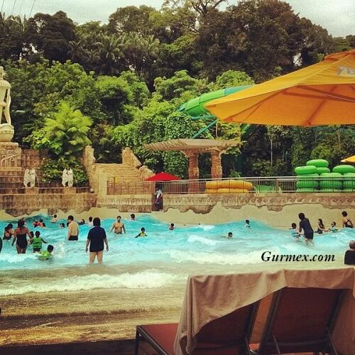 marine-life-park-ne-yenir-nerede-yenir-gurme-rehberi-singapur