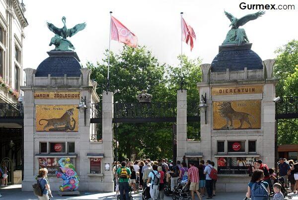 Anvers-Antwerp-Hayvanat-Bahcesi-belcika-commons-wikimediaorg