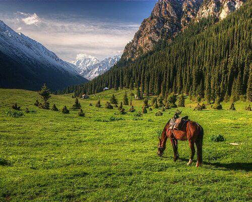 Kırgızistan Yemekleri,Kırgızistan Gezilecek Yerler