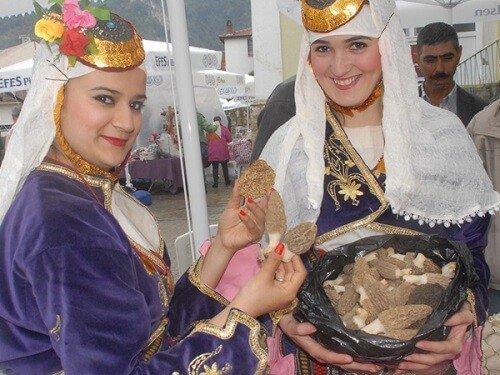 Yemek festivalleri, Yeşilüzümlü kuzugöbeği mantar festivali fethiye