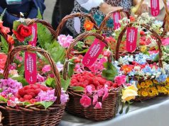 Türkiye Yemek Festivalleri