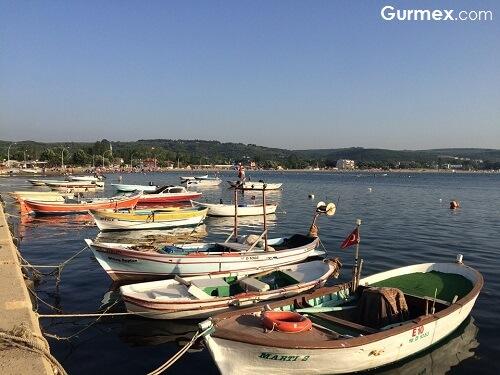 Mudanya gezilecek yerler, Mudanya'da ne yapılır Mudanya'dan ne alınır