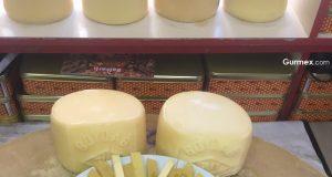 Özkar Süt Ürünleri