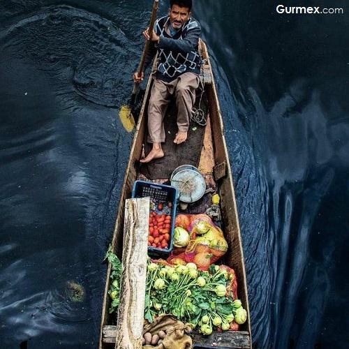 Hindistan da neler yedik