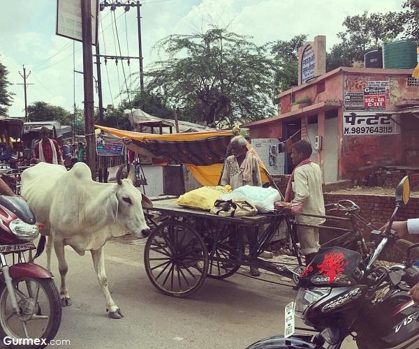 Hindistan güvenli mi