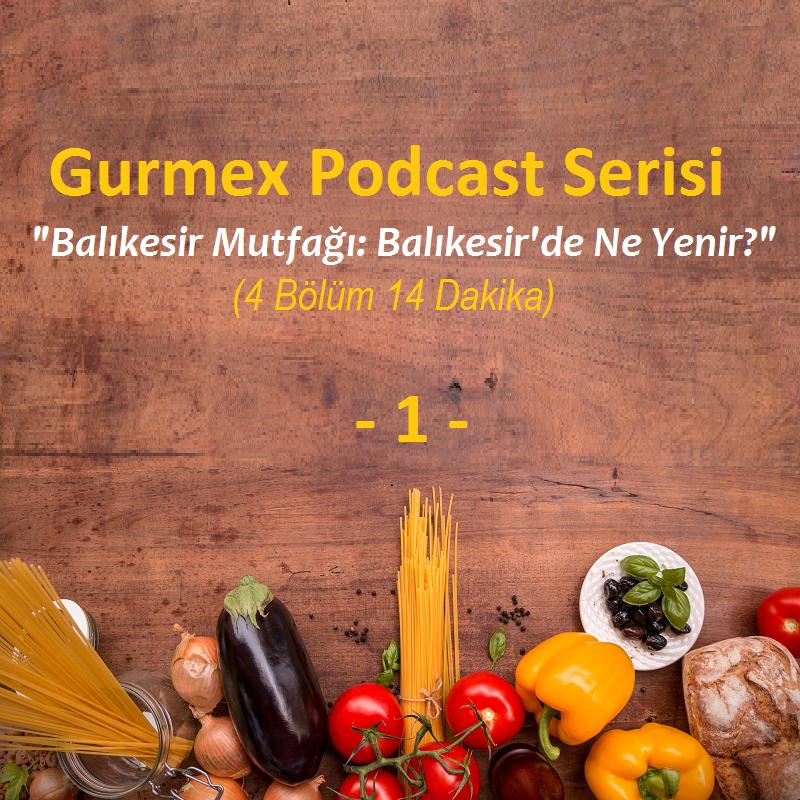 Gurme Blog - cover